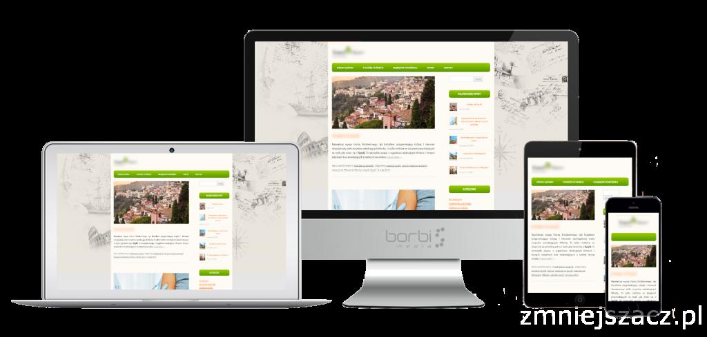 blog firmowy - realizacja Borbis Media
